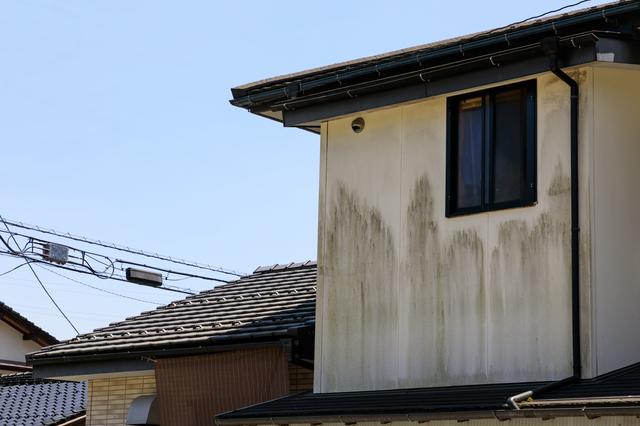 外壁の汚れの原因と対策。我が家を汚れから守り、キレイを維持するリフォームのコツ